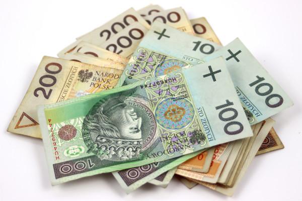 3 na 10 Polaków pożycza pieniądze, by opłacić rachunki [Fot. ellaa44 - Fotolia.com]
