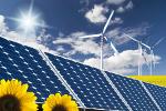 5 czerwca - Światowy Dzień Środowiska [©  luigi giordano - Fotolia.com]