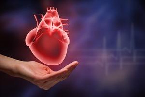 7 prostych działań, które uchronią cię od niewydolności serca [© Sergey Nivens - Fotolia.com]