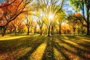 7 sposobów, aby nie przytyć jesienią [Fot. eyetronic - Fotolia.com]