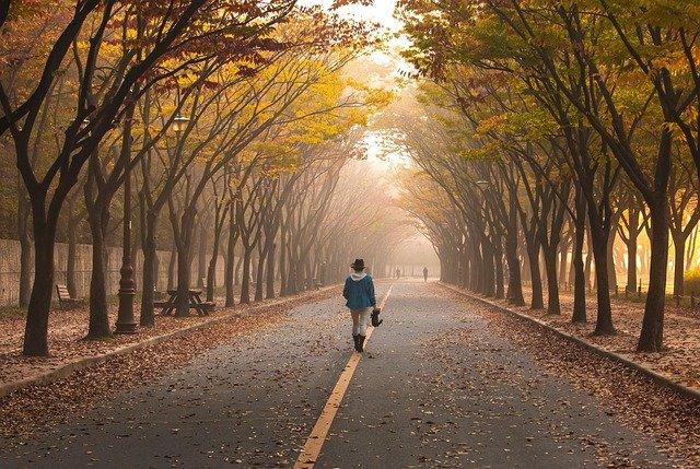 7 tysięcy kroków dziennie wystarczy, by cieszyć się dobrym zdrowiem [fot. pixabay]