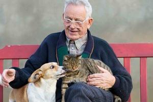 Adoptuj zwierzaka. Adoptuj przyjaciela [© Budimir Jevtic - Fotolia.com]