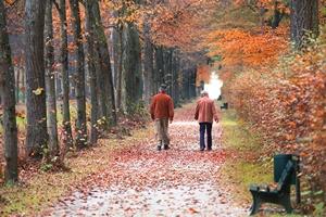 Aktywność fizyczna pomaga przy zapaleniu stawów [© verve - Fotolia.com]
