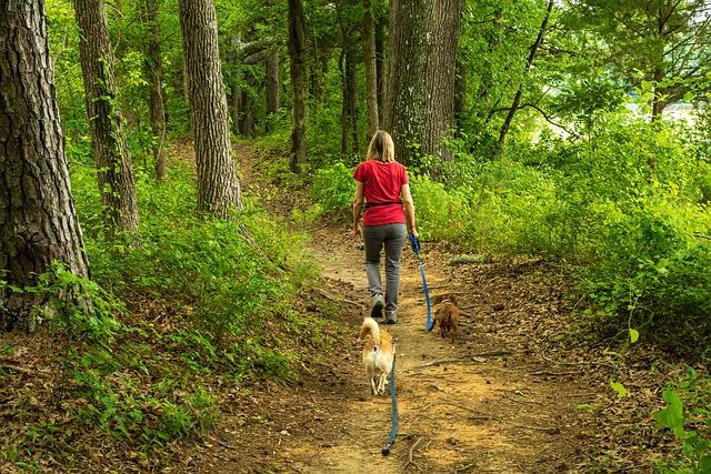 Aktywność fizyczna zmniejsza ryzyko bezdechu sennego [fot. wileydoc from Pixabay]