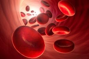 Anemia - niedokrwistość [© psdesign1 - Fotolia.com]
