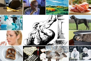 Antynoble (Ig Nobles) 2014 rozdane [fot. collage Senior.pl]