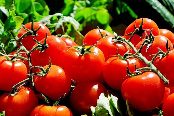Antyrakowe właściwości pomidorów niższe, gdy warzywa te są jedzone z mięsem [fot. Couleur z Pixabay]