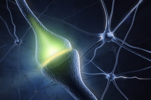 Badania nad starzeniem się mózgu i chorobą Alzheimera [© Sashkin - Fotolia.com]