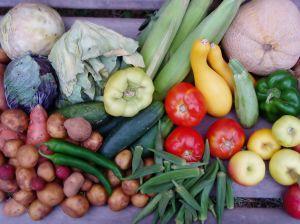 Barwna dieta sposobem na zdrowe i długie życie [August Vegetables 3 fot. sxc.hu]