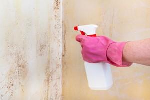 Benzyna ekstrakcyjna: niezbędna w każdym domu   [© vvoe - Fotolia.com]