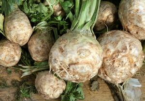 Białe warzywa niesłusznie niedoceniane [© Maria Brzostowska - Fotolia.com]