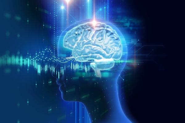 Chcesz poprawić aktywność swojego mózgu? Wysiłek fizyczny w tym pomoże [Fot. monsitj - Fotolia.com]