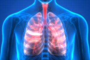 Choroby płuc sprzyjają demencji? [Fot. magicmine - Fotolia.com]