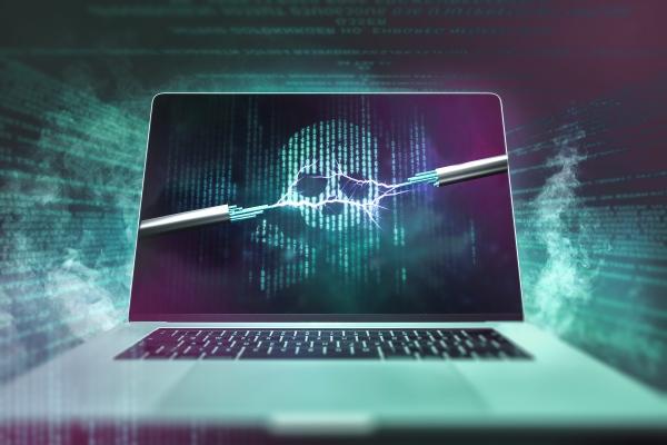Co to jest cyberochrona i dlaczego jest niezbędna dla każdego użytkownika internetu? [Fot. m.mphoto - Fotolia.com]