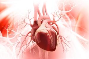 Ćwiczenia odmładzają serce - zmniejszają jego uszkodzenia związane ze starzeniem się [Fot. abhijith3747 - Fotolia.com]