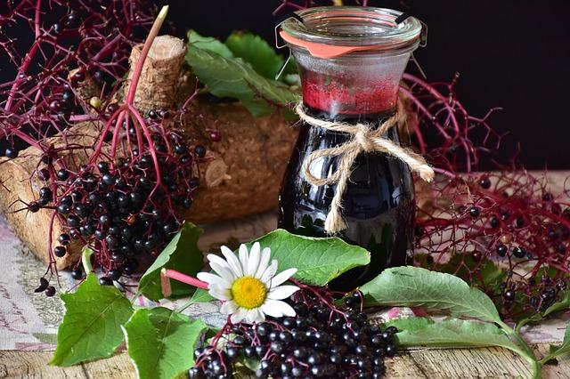 Czarny bez skuteczny w zapobieganiu zmarszczkom i innym objawom starzenia się [fot. RitaE from Pixabay]