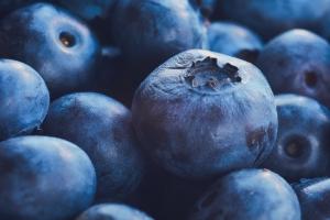 Czy borówki mogą pomóc w cukrzycy typu 2?  [Fot. matteozin - Fotolia.com]