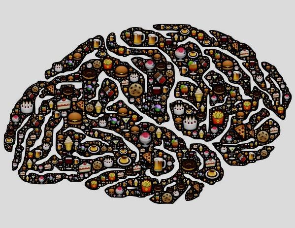 Czy dieta wpływa na wielkość mózgu? [fot.  John Hain z Pixabay]