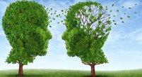 Czynniki rozwoju Alzheimera - sprawdź, które dotyczą Ciebie