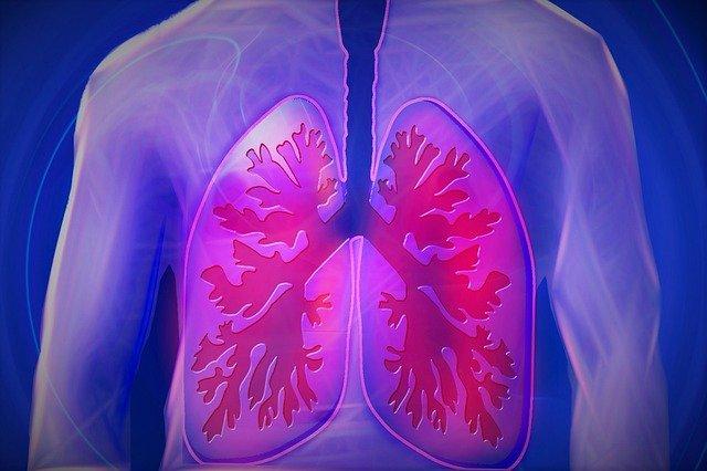 Depresja nasila choroby płuc, w tym POChP [fot. kalhh from Pixabay]
