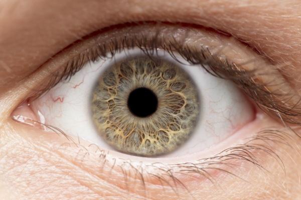 Diagnoza choroby Alzheimera moÅźliwa na podstawie wyglądu oka [Fot. bradleyblackburn - Fotolia.com]