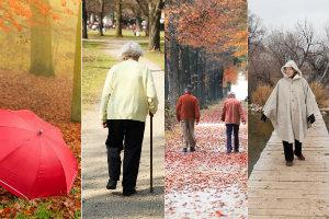 Dlaczego potrzebujemy światła dziennego - 5 powodów, by wychodzić także w ponury dzień [Jesienne spacery, fot. collage Senior.pl]