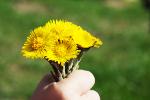 Dlaczego tak trudno wyrażać uczucia wdzięczności [© Jean Kobben - Fotolia.com]