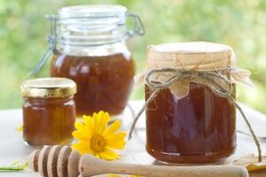 Dlaczego warto sięgać po miód  [© Viktorija - Fotolia.com]