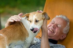 Dogoterapia dla seniorów. Również na codzień [© Budimir Jevtic - Fotolia.com]