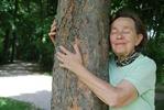 Drzewa pomagają chronić zdrowie [© elypse - Fotolia.com]