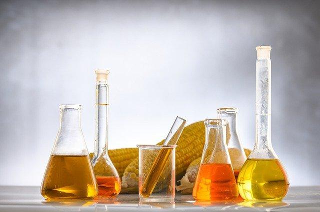 Dużo fruktozy w diecie osłabia układ odpornościowy [fot. Chokniti Khongchum from Pixabay]