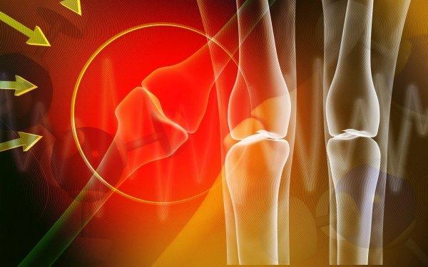 Eksperci ostrzegają: przerwanie cyklicznej terapii osteoporozy może być tragiczne w skutkach [krishnacreations - fotolia.com]