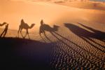 Epifania - Dzień Objawienia Pańskiego - święto Trzech Króli [© Dmytro Korolov - Fotolia.com]