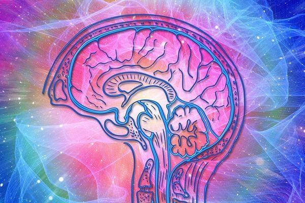 Estrogen pomaga uchronić się przed osłabieniem poznawczym [fot. Gerd Altmann z Pixabay]
