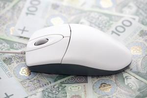 Finanse w Internecie. Jak nie wpaść w tarapaty? [© Jakub Krechowicz - Fotolia.com]