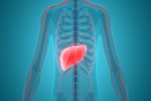 Gdy organizm atakuje własną wątrobę. Autoimmunologiczne choroby wątroby [Fot. magicmine - Fotolia.com]