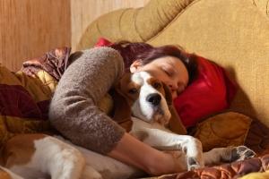 Gdy pies śpi w pobliżu, lepsza jest jakość snu [Fot. Igor Normann - Fotolia.com]