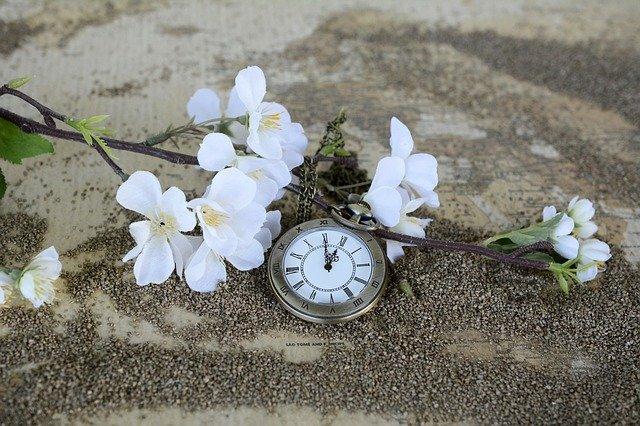 Ignorujesz indywidualny zegar biologiczny? Masz wyÅźsze ryzyko depresji i niÅźszej jakości Åźycia [fot. anncapictures from Pixabay]