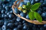 Jagody - super jedzenie anti-aging [© Olga Lyubkin - Fotolia.com]
