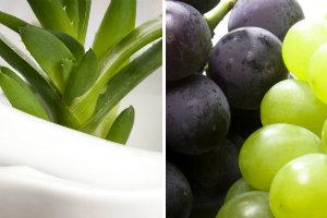 Jak aloes i winogrona wpływają na organizm [fot. collage Senior.pl]