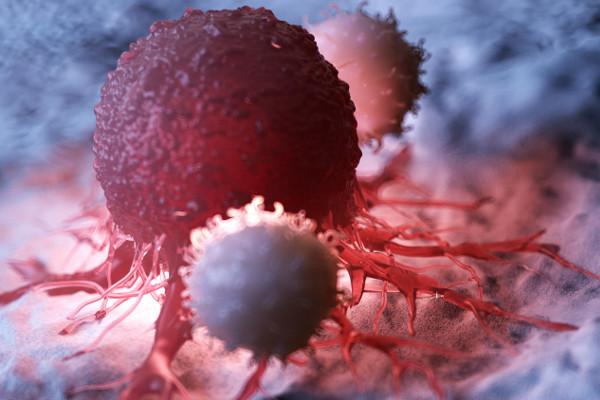 Jak ćwiczenia pomagają chorym na raka  [Fot. Sebastian Kaulitzki - Fotolia.com]