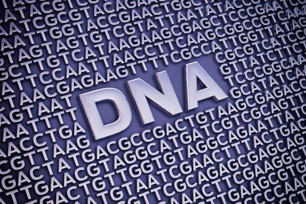 Jak geny wpływają na wagę - odchudzanie może być trudne z powodu określonego DNA [Fot. nobeastsofierce - Fotolia.com]