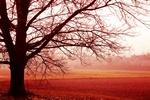 Jak pokonać jesienną depresję [© Giuseppe Porzani - Fotolia.com]