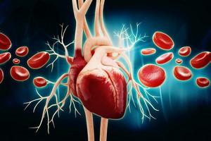 Jak rozpoznać chorobę wieńcową? [© abhijith3747 - Fotolia.com]