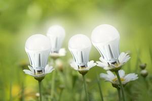 Jak wybierać lampy LED?  [© puchan - Fotolia.com]