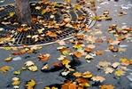 Jak zaradzić sezonowej depresji? [© Elenathewise - Fotolia.com]