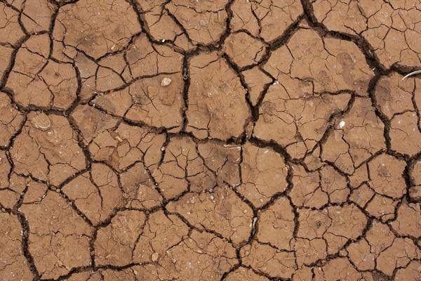Jak zmiany klimatyczne niszczą nasze zdrowie [fot. engin akyurt z Pixabay]