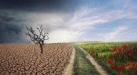 Jak zmiany klimatyczne zgrażają zdrowiu