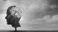 Jak zmniejszyć ryzyko demencji: przewodnik WHO