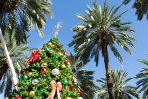 Jarmarki bożonarodzeniowe pod palmami [© oneinchpunch - Fotolia.com]